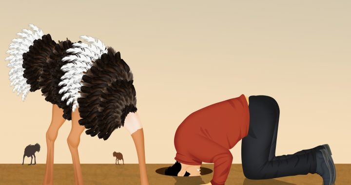 ostrich and man with his head in the sand